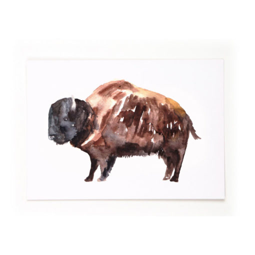 postkarte_bison