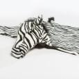 ws-1005-zebra-disguise-ii
