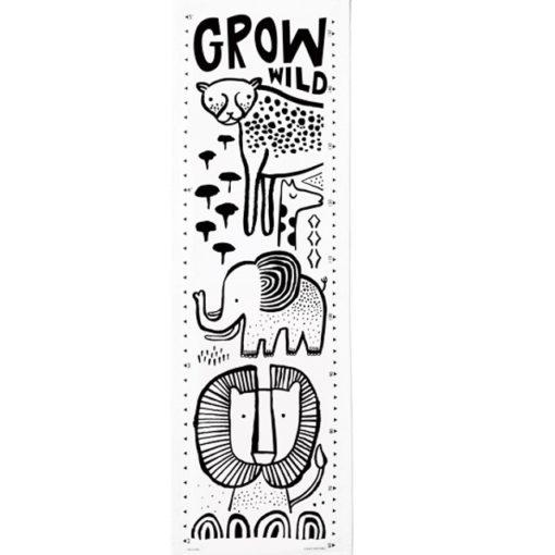 Safari-Growth-Chart-Resized