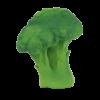 brucy-the-broccoli2_trulsundtrine