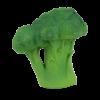 brucy-the-broccoli_trulsundtrine