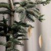 Blätter2_trulsundtrine